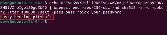Entschlüsseltes Passwort in das Terminalfenster geschrieben