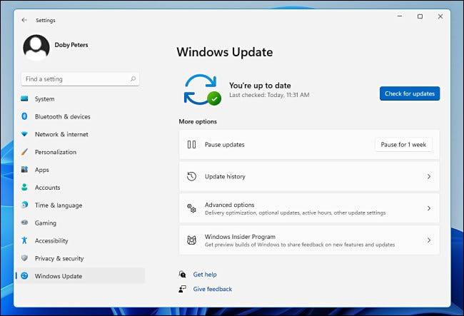 Windows Update in den Windows 11-Einstellungen.
