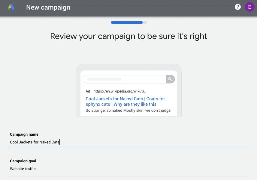 Überprüfung der Google Ads-Kampagne