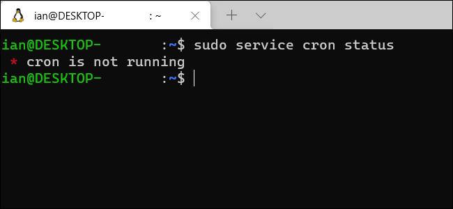 Ein Windows WSL-Terminalfenster, das anzeigt, dass Cron nicht ausgeführt wird.