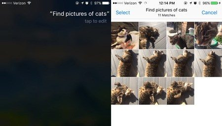 Siri-Suche-Fotos-Held