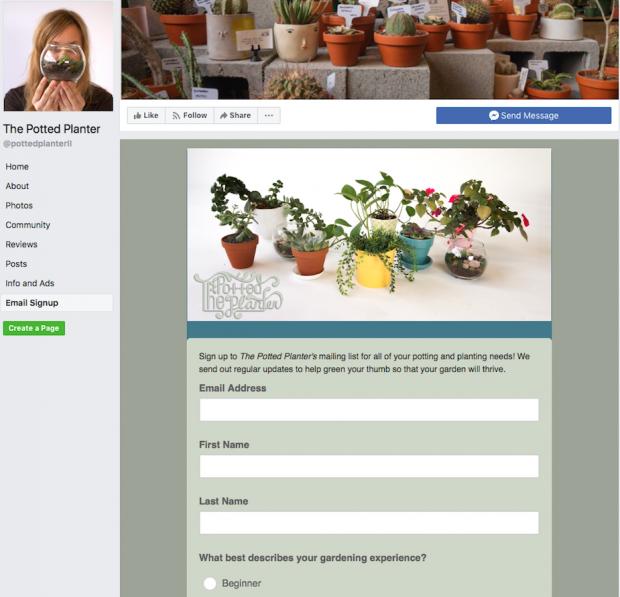 MailChimp Facebook-Anmeldeformular