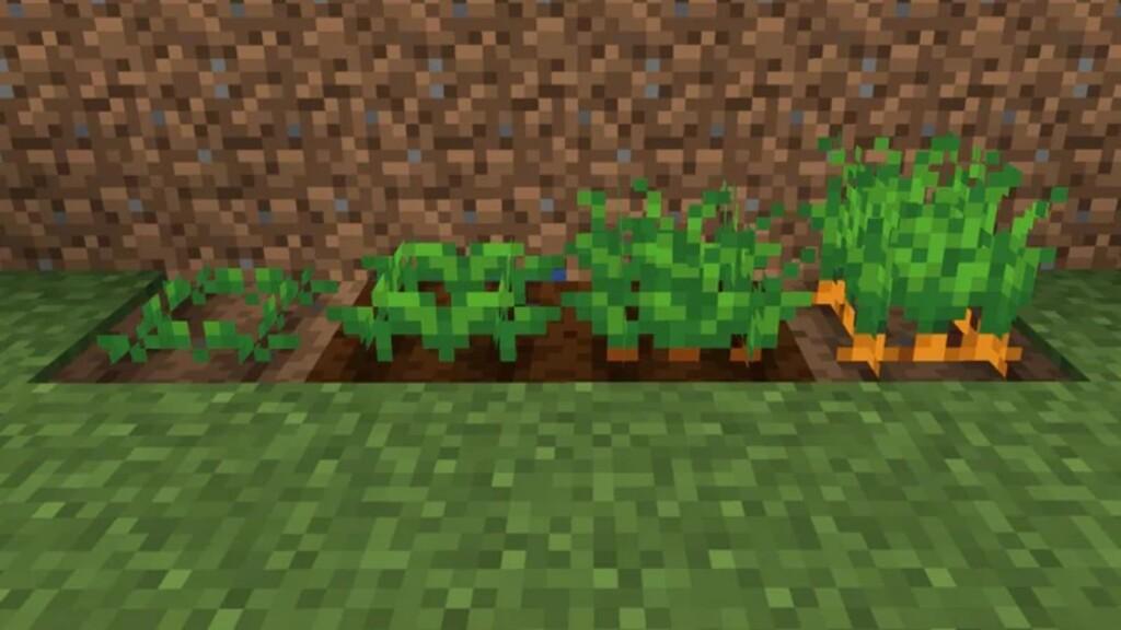 Minecraft Karotten 1 - Moyens I/O