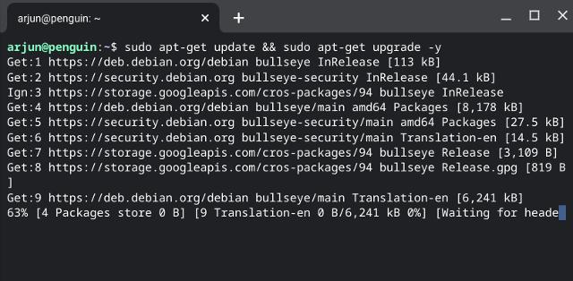 Aktualisieren Sie Linux auf Chromebook auf Debian Bullseye