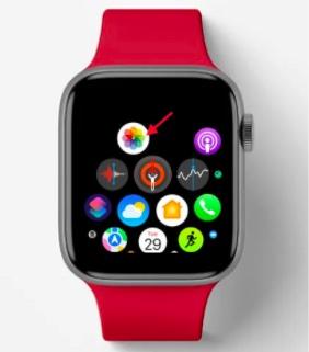 Öffnen Sie die Fotos-App auf der Apple Watch