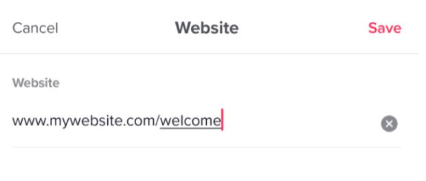 URL unter Website eingeben